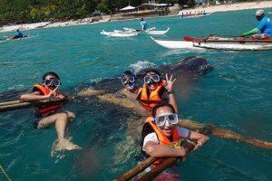 Bơi cùng cá voi - du học hè Philippines