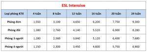 Học phí trường LSLC - Khóa Intensive ESL