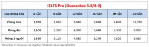 Học phí trường Philinter - Khóa IELTS Pro (6.0)