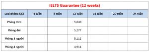 Học phí trường CPILS - Khóa IELTS Guarantee