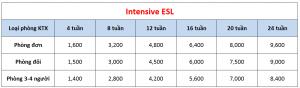 Học phí trường A&J - Khóa Intensive ESL